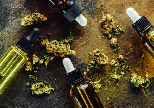 CBD Oil Tincture and Buds - CBD Essence